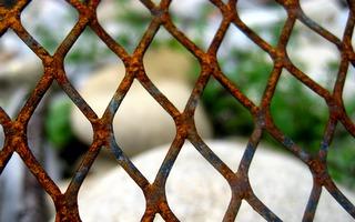 Prison ou vie