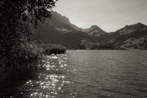 Reflets sur le Lac Noir (version monochrome)